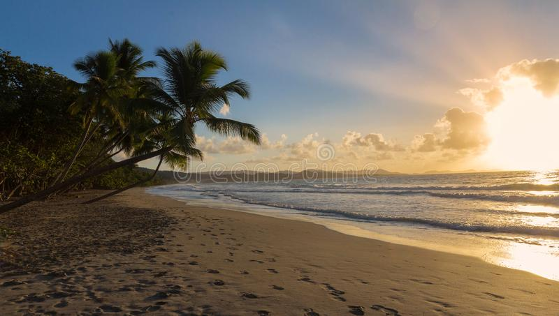 Zonsondergang, paradijsstrand en palmen, het eiland van Martinique stock fotografie