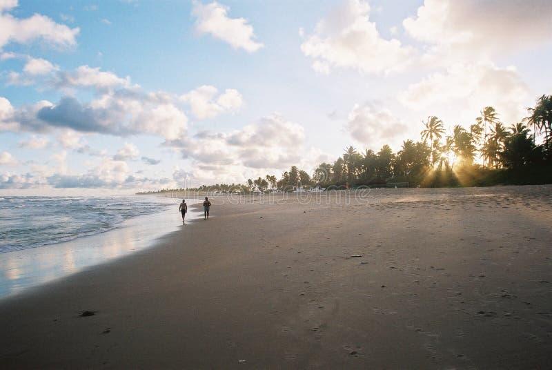 Zonsondergang in Sauipe - de Zichtbare Korrel van de Film. royalty-vrije stock foto's