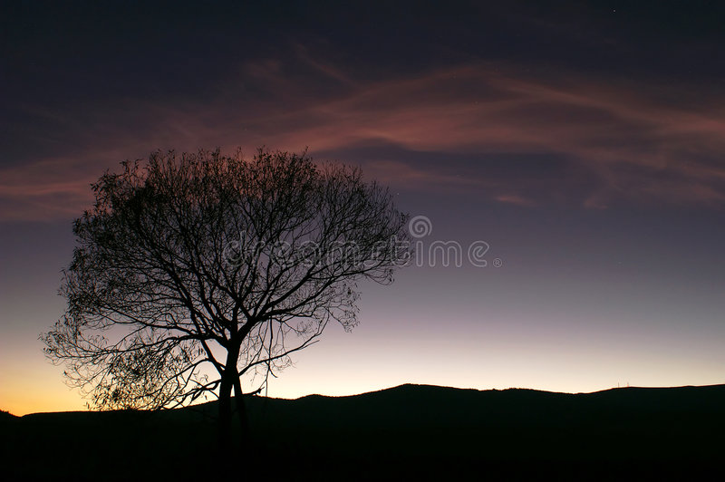 Zonsondergang silhoutte stock fotografie