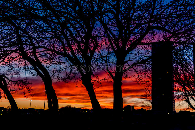 Zonsondergang in stad royalty-vrije stock foto's