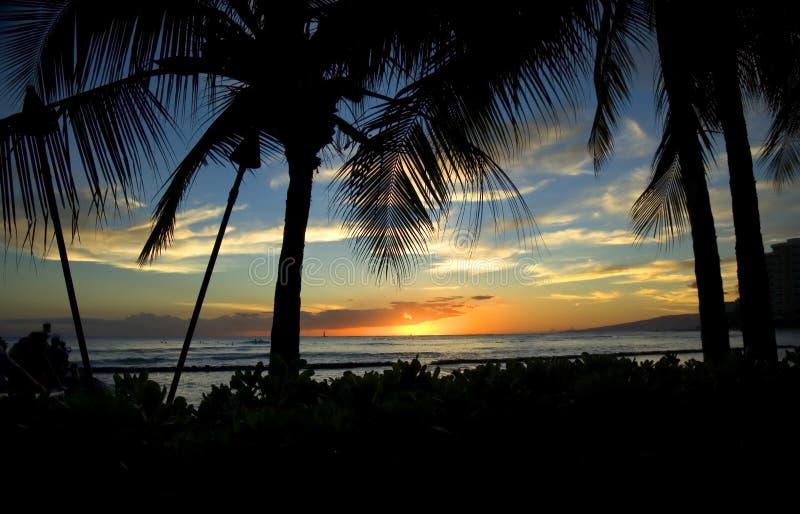 Zonsondergang in Strand Waikiki royalty-vrije stock foto's
