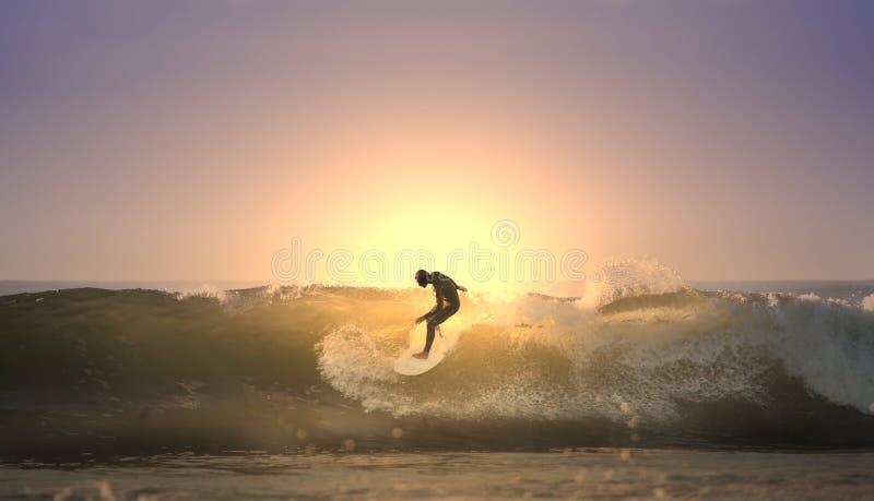 Zonsondergang surfer royalty-vrije stock afbeelding