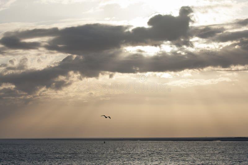 Zonsondergang in Texel stock afbeelding