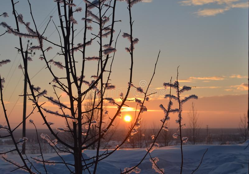 Zonsondergang van de Insanely de mooie winter royalty-vrije stock fotografie