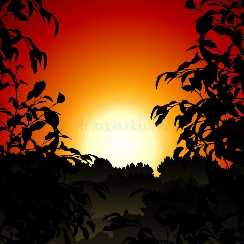 Zonsondergang in Wildernis royalty-vrije illustratie
