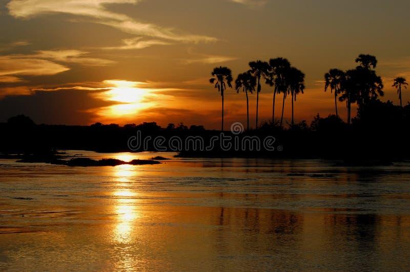 Zonsondergang Zambezi stock afbeeldingen