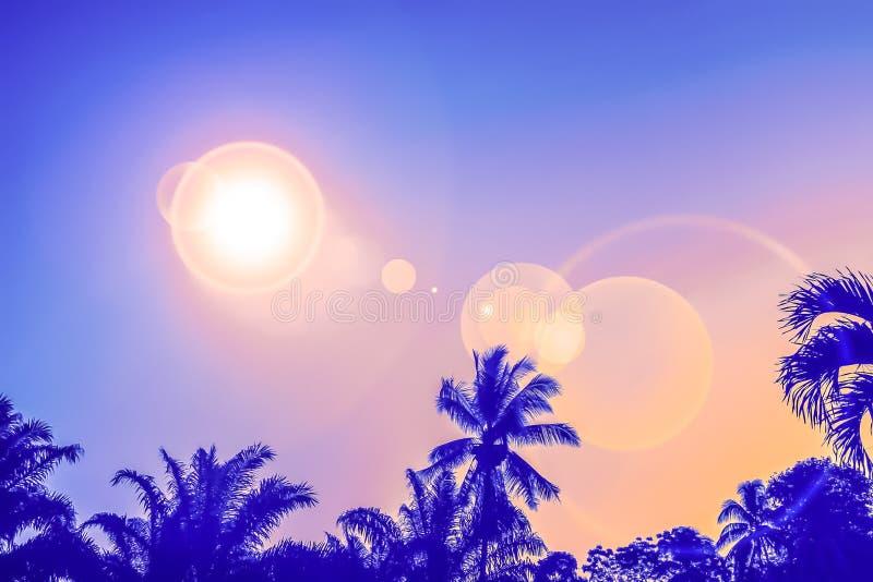 Zonsondergangachtergrond en de aardachtergrond van de gloed lichte zomer royalty-vrije stock afbeeldingen