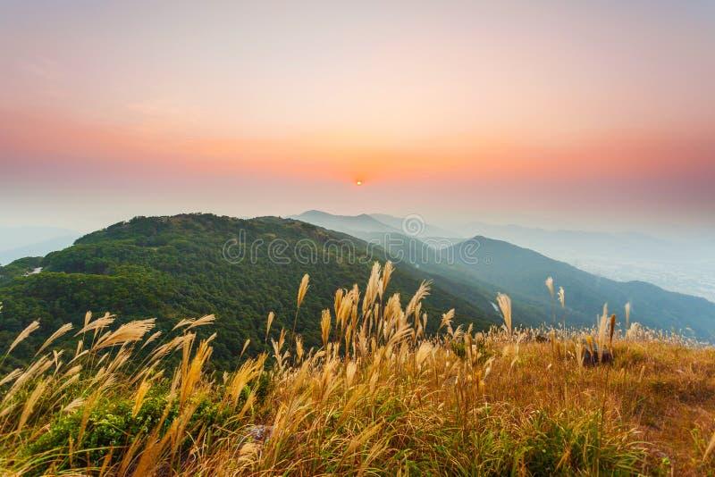 Zonsondergangbergen stock afbeeldingen