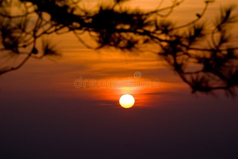 Zonsonderganghemel bij het Nationale Park van Phukradueng stock fotografie