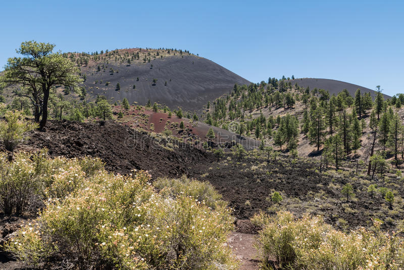 Zonsondergangkrater Volcano National Monument royalty-vrije stock fotografie