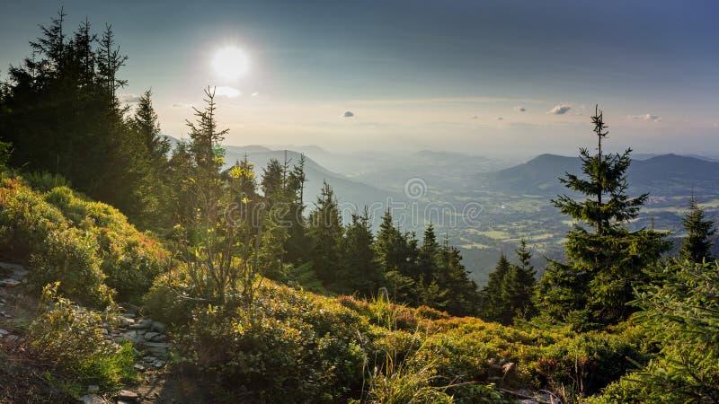 Zonsonderganglandschap op Smrk-berg in Moravskoslezske Beskydy in Tsjechische republiek met duidelijke hemel en slechts weinig wo royalty-vrije stock afbeelding