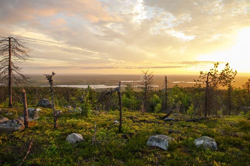 Zonsondergangmening aan taigabos en meren van Berg Vottovaara, stock foto