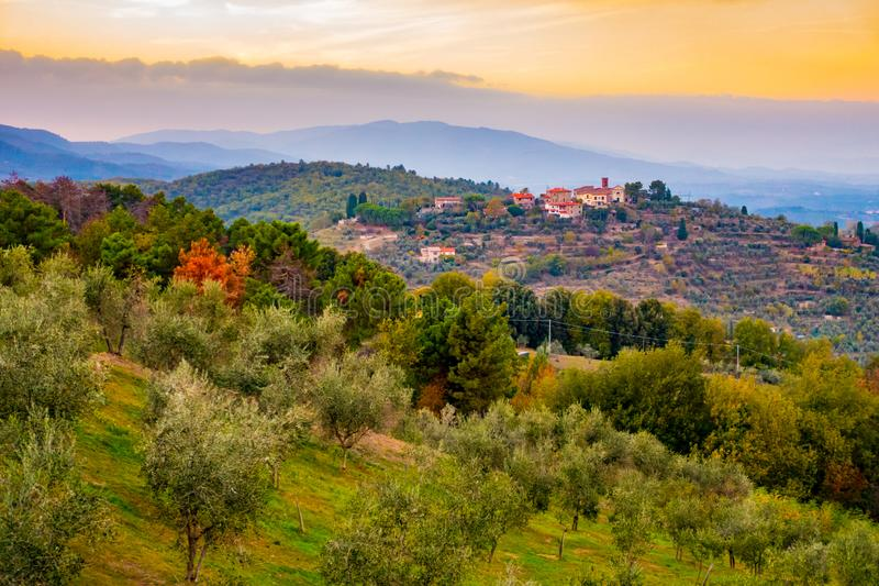 Zonsondergangmening over de heuvels in olijfbomen rond Cavriglia in de herfst worden behandeld, Toscanië, Italië dat royalty-vrije stock afbeeldingen