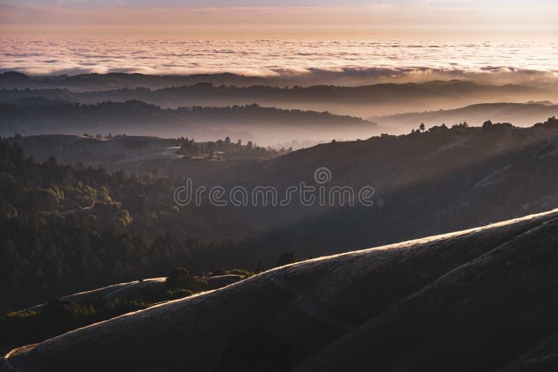 Zonsondergangmening van gelaagde die heuvels en valleien door een overzees van wolken in Santa Cruz-bergen worden behandeld; De b royalty-vrije stock fotografie