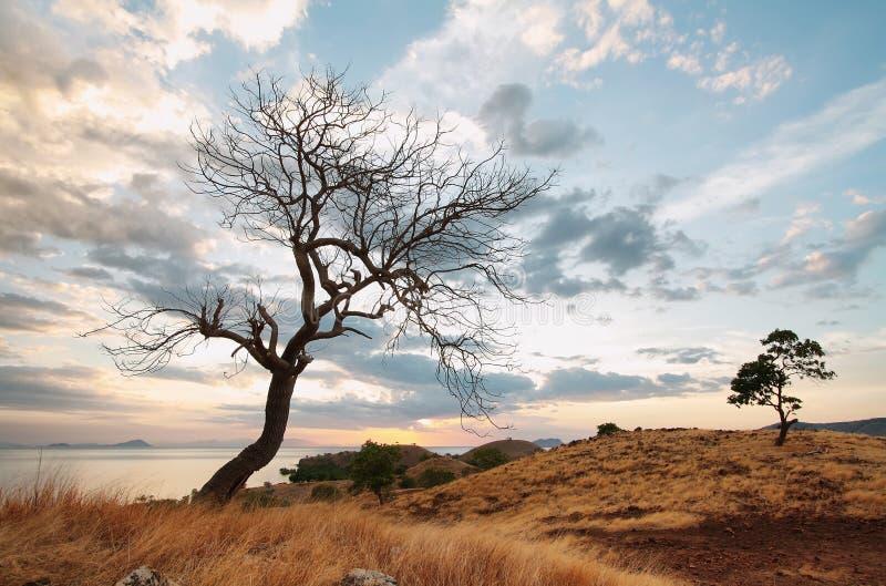 Zonsondergangpanorama op tropisch Seraya-Eiland royalty-vrije stock afbeeldingen