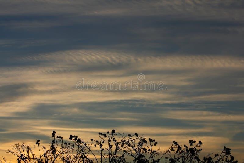 Download Zonsondergangsilhouet stock foto. Afbeelding bestaande uit licht - 107701846