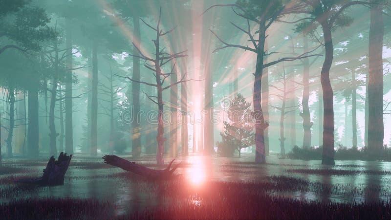 Zonsondergangstralen in moerassig bos bij nevelige dageraad of schemer royalty-vrije illustratie
