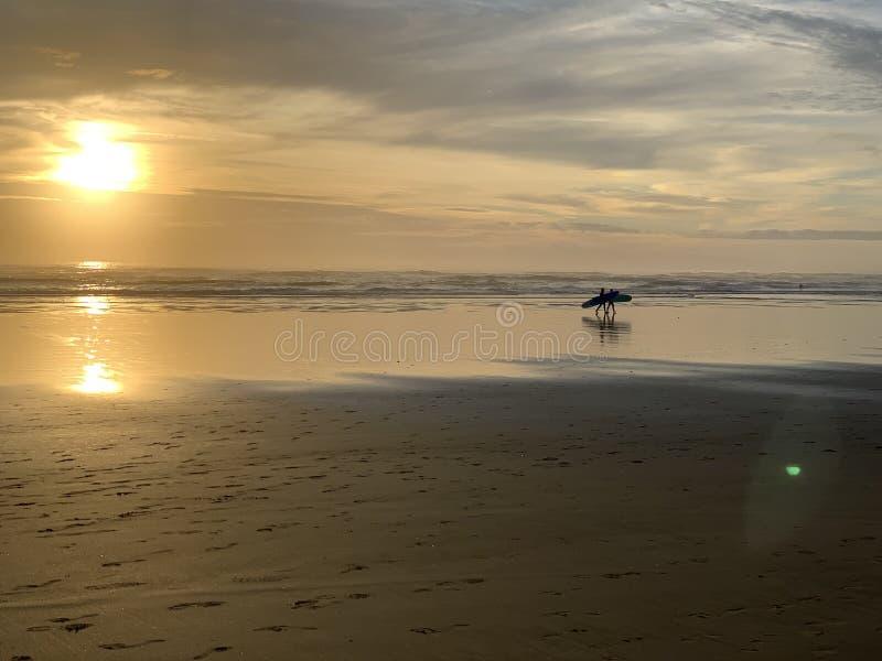Zonsondergangsurfers bij het strand stock afbeeldingen