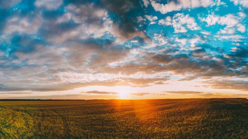 Zonsondergangzonsopgang over Gebied of Weide Heldere Dramatische Hemel over Grond stock fotografie