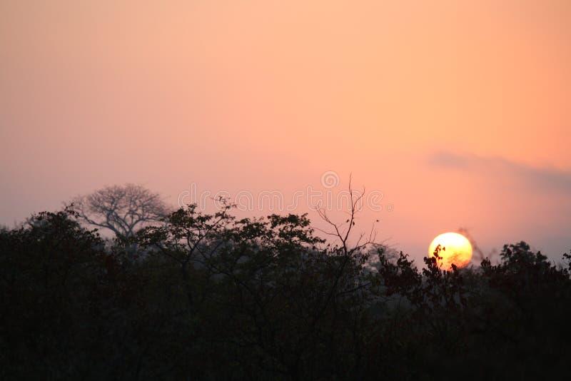 Zonsopgang aan een andere prachtige dag in Afrika royalty-vrije stock fotografie