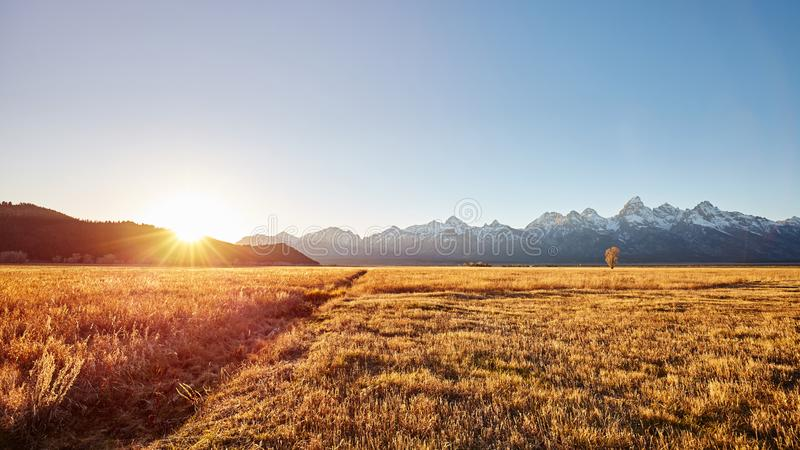 Zonsopgang bij het Nationale Park van Grand Teton, de V.S. stock foto