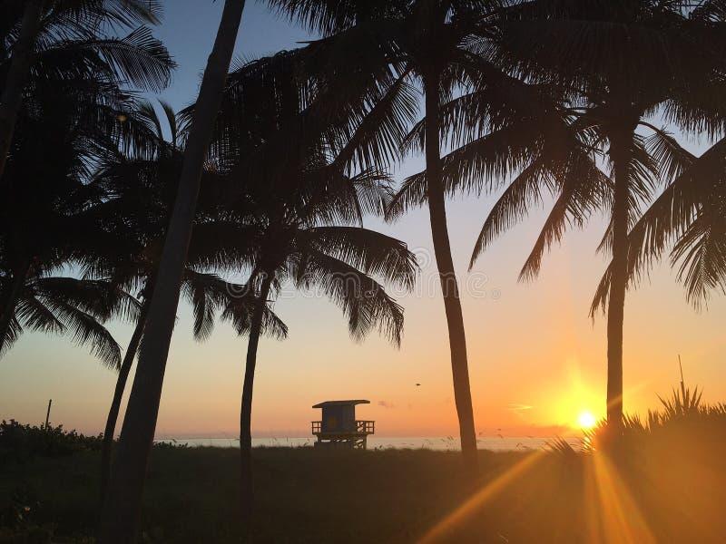 Zonsopgang bij het strand royalty-vrije stock afbeelding