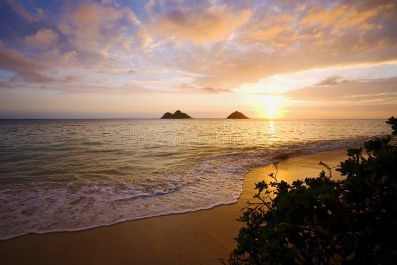 Zonsopgang bij lanikaistrand in Hawaï stock afbeelding