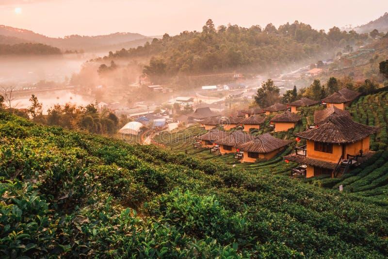 Zonsopgang bij Lee de Thaise, Chinese nederzetting van wijnrak, Mae Hong Son, Thailand royalty-vrije stock afbeelding