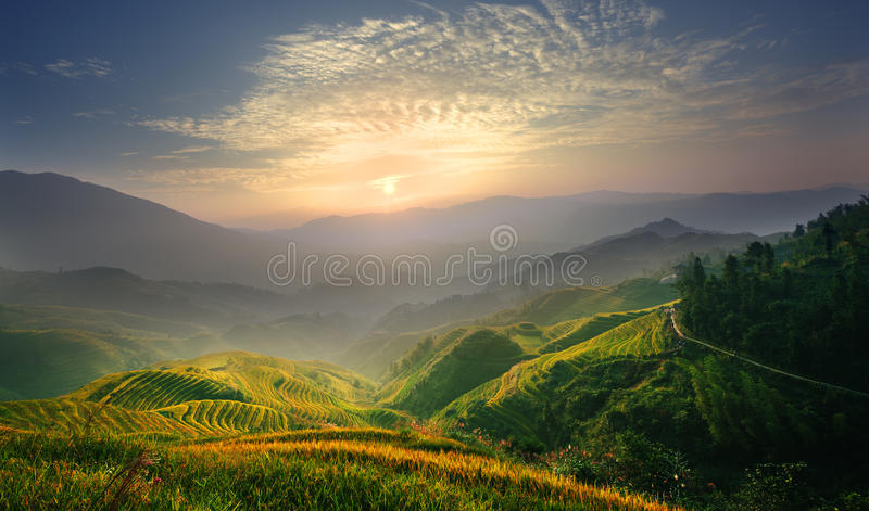 Zonsopgang bij rijstterras royalty-vrije stock afbeeldingen