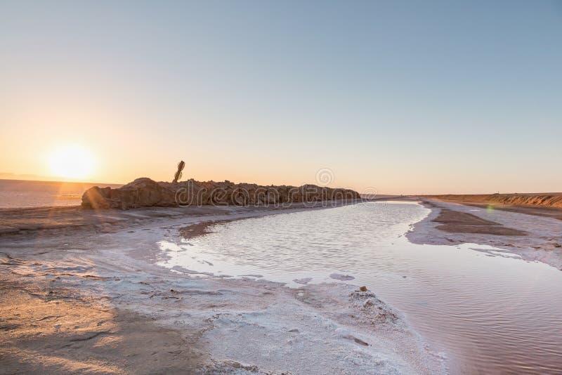 Zonsopgang in Chott Gr Djerid - zout meer in Tunesi? in Sahara Desert royalty-vrije stock fotografie