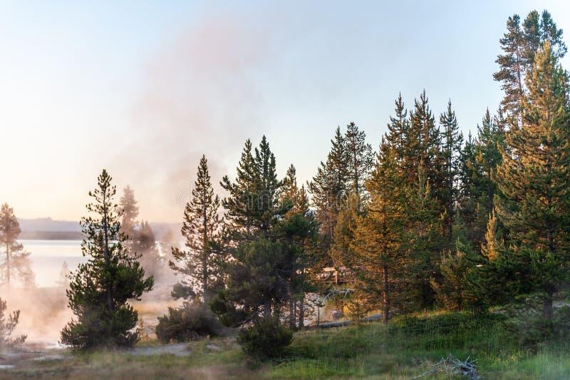 Zonsopgang de het Westenduim Aera van het Nationale Park van Yellowstone stock afbeeldingen