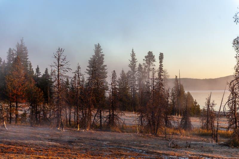 Zonsopgang de het Westenduim Aera van het Nationale Park van Yellowstone royalty-vrije stock foto
