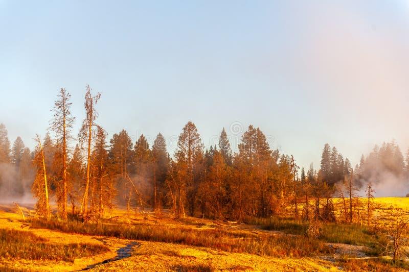 Zonsopgang de het Westenduim Aera van het Nationale Park van Yellowstone royalty-vrije stock afbeeldingen