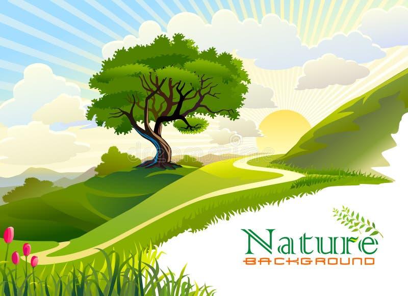 Zonsopgang in de heuvels en de eenzame boom stock illustratie