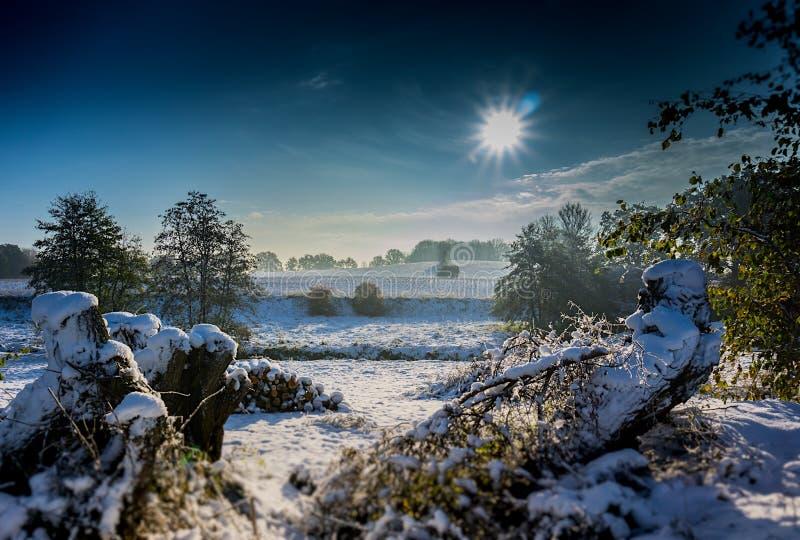 Zonsopgang in de wintersprookjesland De zon glanst op mooi landschap stock foto's