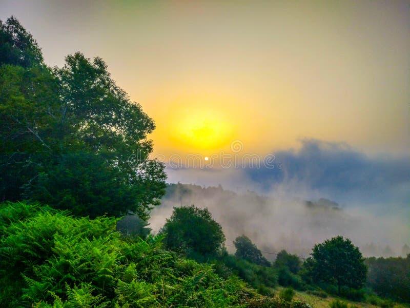 Zonsopgang in een groene grasweide over de wolken, met bergen stock fotografie