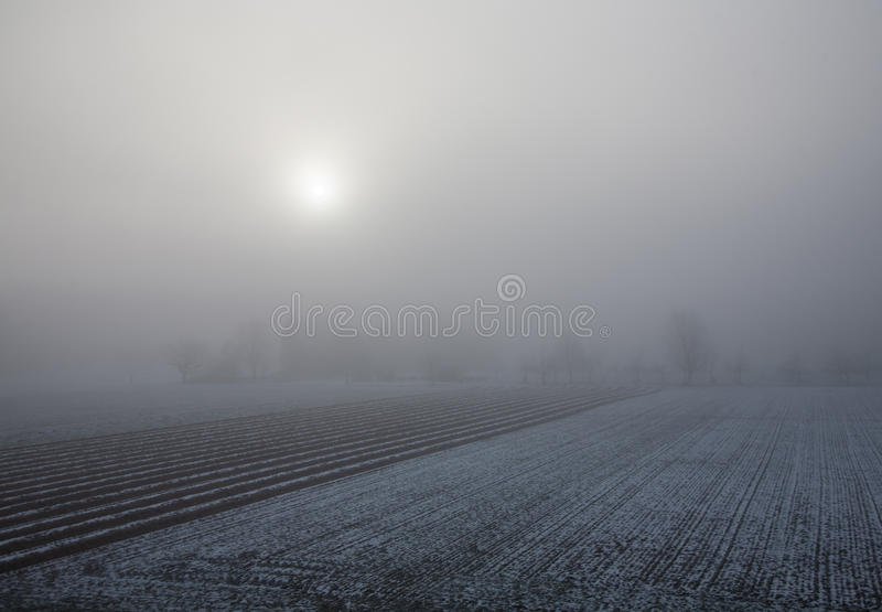 Zonsopgang en mist op een sneeuwlandbouwbedrijfgebied royalty-vrije stock afbeelding