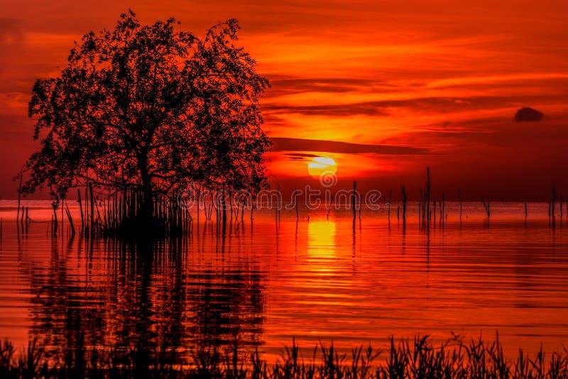 Zonsopgang en mooie hemel in songkhlameer Phatthalung Thailand royalty-vrije stock foto