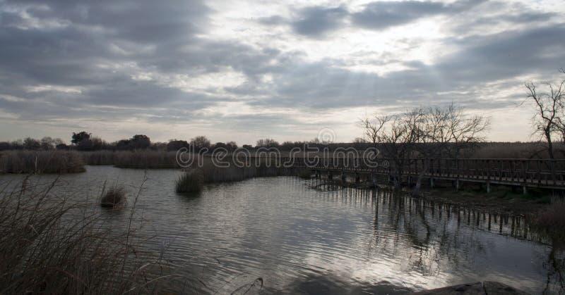 Zonsopgang in het meer stock afbeeldingen