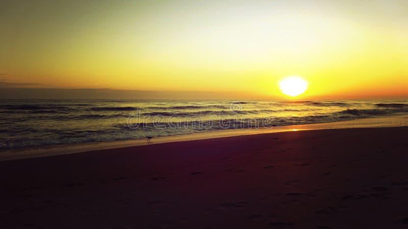 Zonsopgang in het Strand met Zon het Toenemen royalty-vrije stock afbeelding