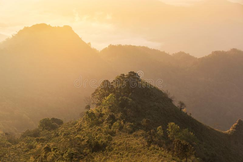 Zonsopgang met mist in vroege ochtend op Phu-Chi Dao of de berg van Phu Chee Dao in Chiang Rai, Thailand royalty-vrije stock afbeeldingen
