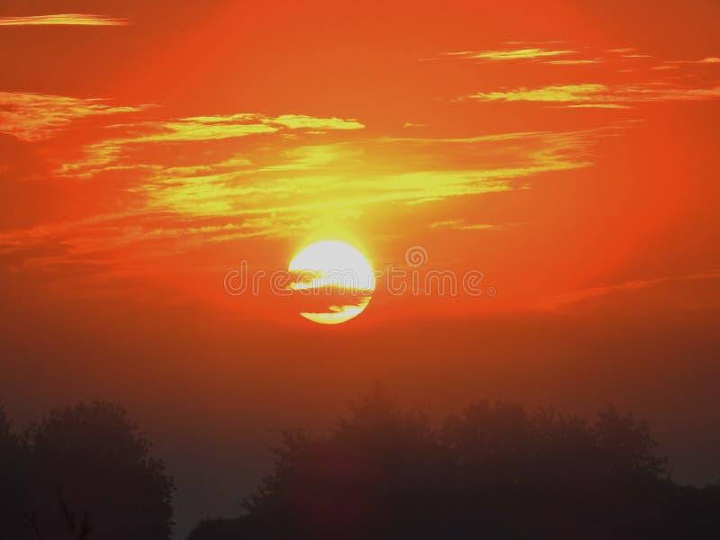 Zonsopgang met oranje hemel royalty-vrije stock foto's