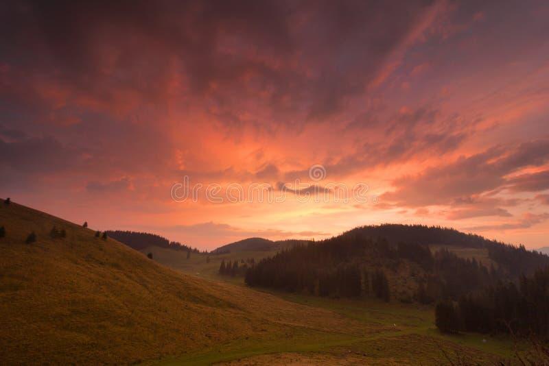 Zonsopgang na regen op een bergweiland in Roemenië stock afbeeldingen