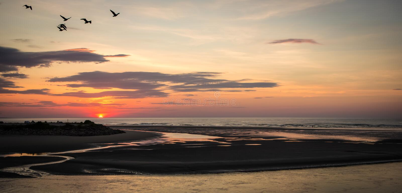 Zonsopgang in Ogunquit Maine met Vogels en Strand royalty-vrije stock foto's