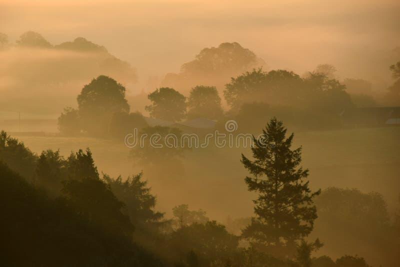 Zonsopgang op Dartmoor royalty-vrije stock foto