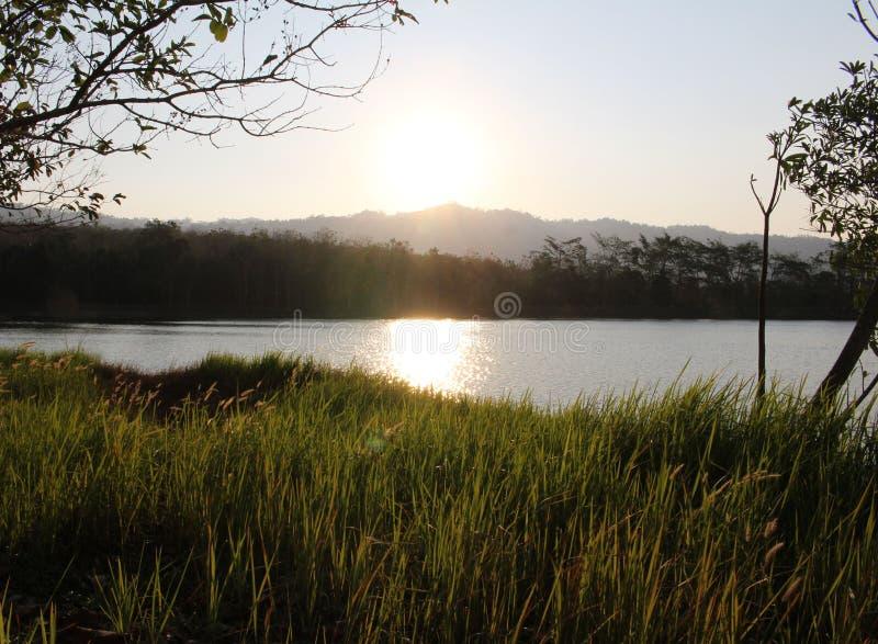 Zonsopgang op het meer stock foto's