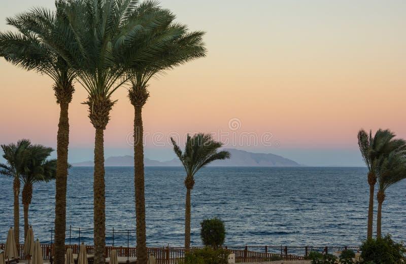 Zonsopgang op het overzees, de bergen en de palmen royalty-vrije stock foto