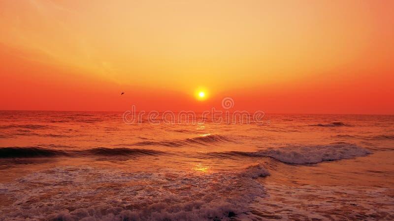 Zonsopgang op het strand stock afbeeldingen