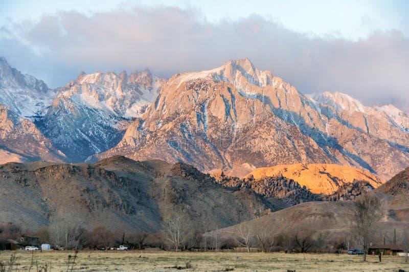 Zonsopgang op Mt Whitney en de Siërra Nevada Mountains Eenzame Pijnboom, Californië, de V.S. stock foto's