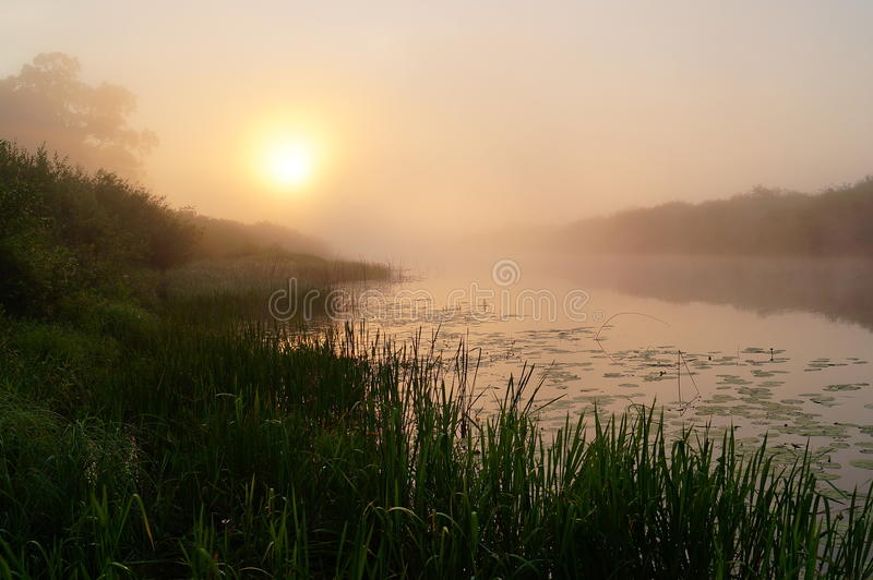 Zonsopgang op rivier stock fotografie